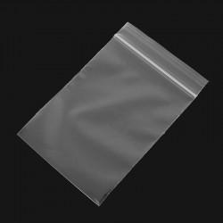 Plastic Zip-Bags 95x160mm -...